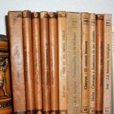 Libros antiguos: LOTE LIBROS BIOLOGÍA, ZOOLOGÍA, PALEONTOLOGÍA. EDITORIAL LABOR, 1929 ¡ÚLTIMA REBAJA!. Lote 94212405