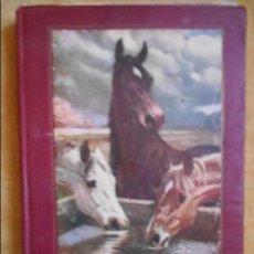 Libros antiguos: SERVICIOS DE REPRODUCCION Y REMONTA CABALLAR. INDICACIONES Y DATOS PARA SU IMPLANTACION EN EL PAIS. . Lote 95083331