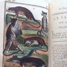 Libros antiguos: AÑO 1787 * CUADRUPEDOS * CON 311 PAG Y 10 LAMINAS COLOREADAS A MANO * BUFFON * HISTORIA NATURAL . Lote 95434291