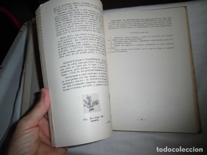 Libros antiguos: FISICA QUIMICA Y BIOLOGIA DEL MAR FAUNA Y FLORA MARINAS.LUIS ALABART BALLESTEROS.4º CURSO BACHILLER - Foto 7 - 96186843