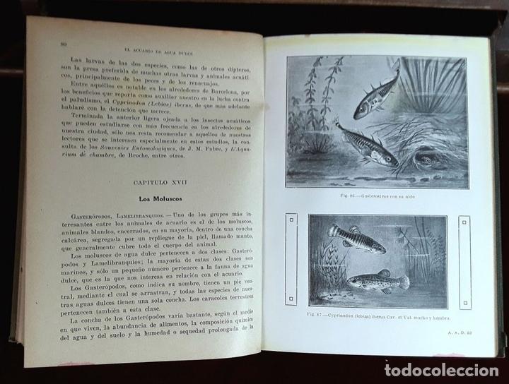 Libros antiguos: EDITORES SEIX Y BARRAL. 2 EJEMPLARES. VARIOS AUTORES. 1927. - Foto 4 - 97204407