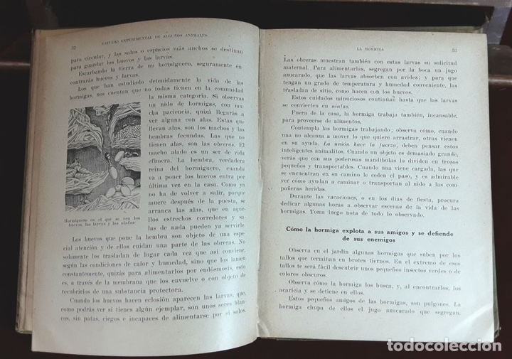 Libros antiguos: EDITORES SEIX Y BARRAL. 2 EJEMPLARES. VARIOS AUTORES. 1927. - Foto 6 - 97204407