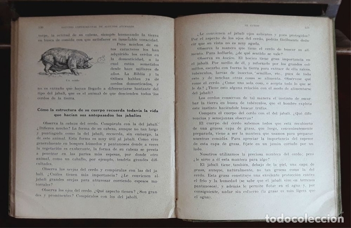 Libros antiguos: EDITORES SEIX Y BARRAL. 2 EJEMPLARES. VARIOS AUTORES. 1927. - Foto 7 - 97204407