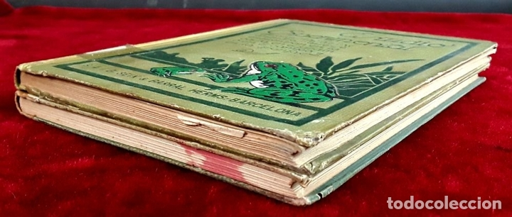 Libros antiguos: EDITORES SEIX Y BARRAL. 2 EJEMPLARES. VARIOS AUTORES. 1927. - Foto 8 - 97204407