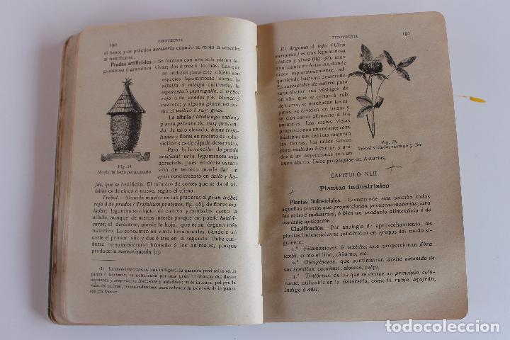 Libros antiguos: AGRICULTURA Y TECNICA AGRICOLA E INDUSTRIAL, DIONISIO M. AYUSO, OVIEDO 1914 - Foto 5 - 97265679