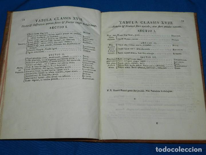 Libros antiguos: (MF) BOTANICA - CASIMIRI GOMEZII ORTEGAE - TABULAE BOTANICAE IN QUIBUS CLASSES , MATRITI MDCCLXXIII - Foto 5 - 97389155