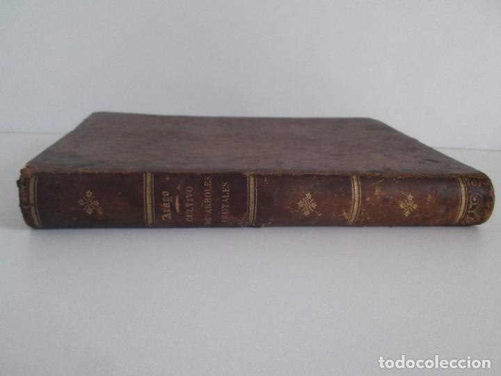 Libros antiguos: TRATADO COMPLETO DEL CULTIVO DE ARBOLES Y ARBUSTOS FRUTALES. BUENAVENTURA ARAGO. 1874 - Foto 2 - 98701191