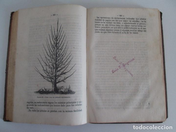 Libros antiguos: TRATADO COMPLETO DEL CULTIVO DE ARBOLES Y ARBUSTOS FRUTALES. BUENAVENTURA ARAGO. 1874 - Foto 17 - 98701191
