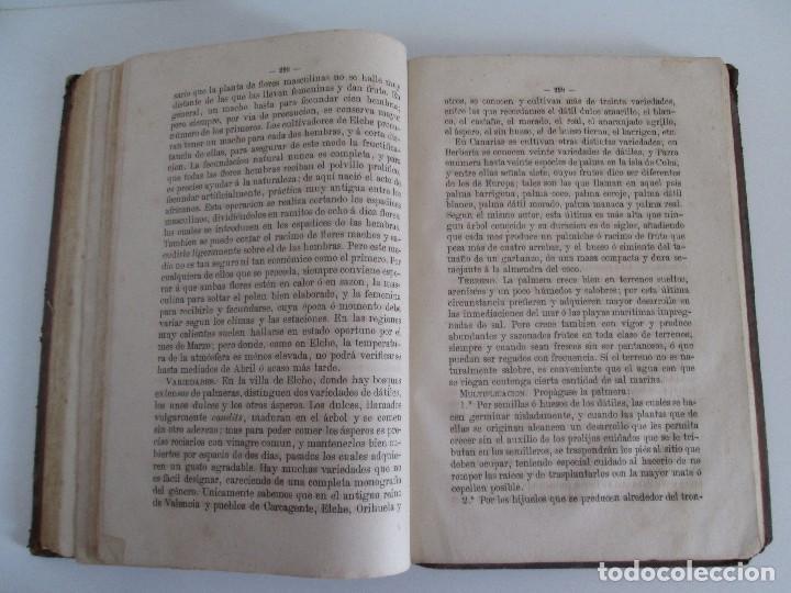 Libros antiguos: TRATADO COMPLETO DEL CULTIVO DE ARBOLES Y ARBUSTOS FRUTALES. BUENAVENTURA ARAGO. 1874 - Foto 18 - 98701191