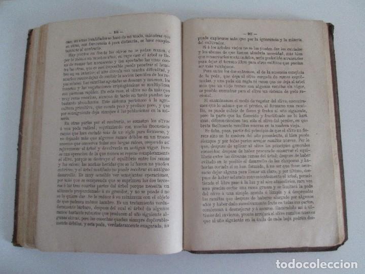 Libros antiguos: TRATADO COMPLETO DEL CULTIVO DE ARBOLES Y ARBUSTOS FRUTALES. BUENAVENTURA ARAGO. 1874 - Foto 19 - 98701191