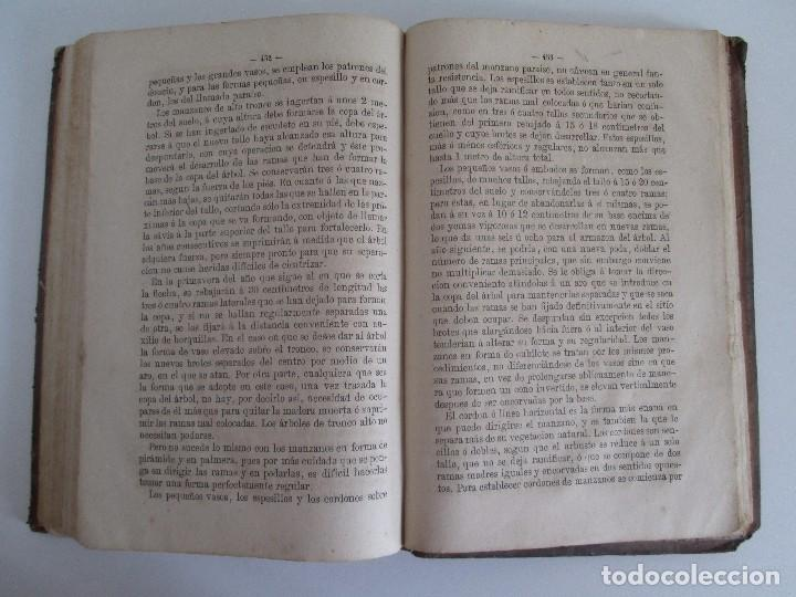 Libros antiguos: TRATADO COMPLETO DEL CULTIVO DE ARBOLES Y ARBUSTOS FRUTALES. BUENAVENTURA ARAGO. 1874 - Foto 20 - 98701191