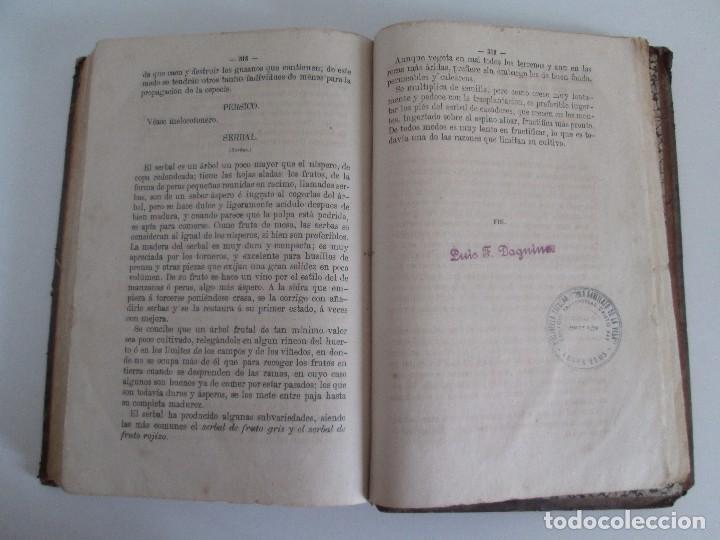 Libros antiguos: TRATADO COMPLETO DEL CULTIVO DE ARBOLES Y ARBUSTOS FRUTALES. BUENAVENTURA ARAGO. 1874 - Foto 21 - 98701191
