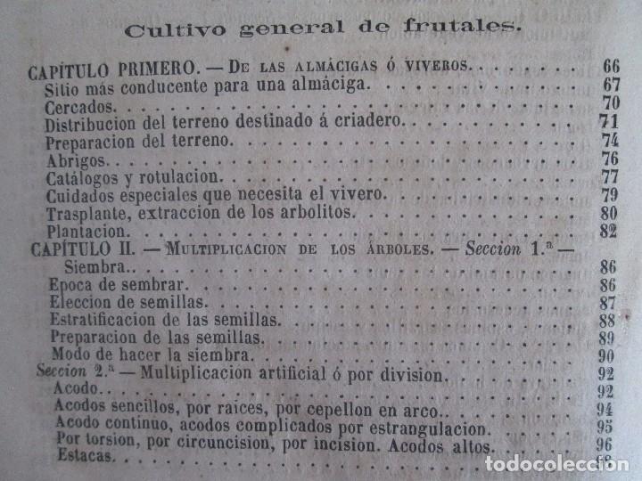 Libros antiguos: TRATADO COMPLETO DEL CULTIVO DE ARBOLES Y ARBUSTOS FRUTALES. BUENAVENTURA ARAGO. 1874 - Foto 25 - 98701191