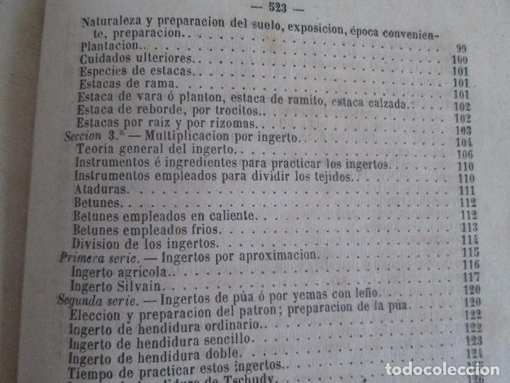 Libros antiguos: TRATADO COMPLETO DEL CULTIVO DE ARBOLES Y ARBUSTOS FRUTALES. BUENAVENTURA ARAGO. 1874 - Foto 26 - 98701191