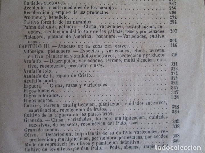 Libros antiguos: TRATADO COMPLETO DEL CULTIVO DE ARBOLES Y ARBUSTOS FRUTALES. BUENAVENTURA ARAGO. 1874 - Foto 31 - 98701191