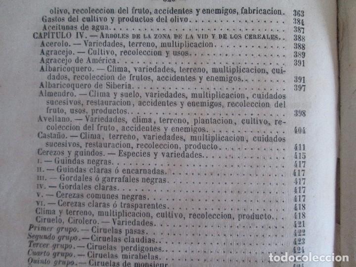 Libros antiguos: TRATADO COMPLETO DEL CULTIVO DE ARBOLES Y ARBUSTOS FRUTALES. BUENAVENTURA ARAGO. 1874 - Foto 32 - 98701191
