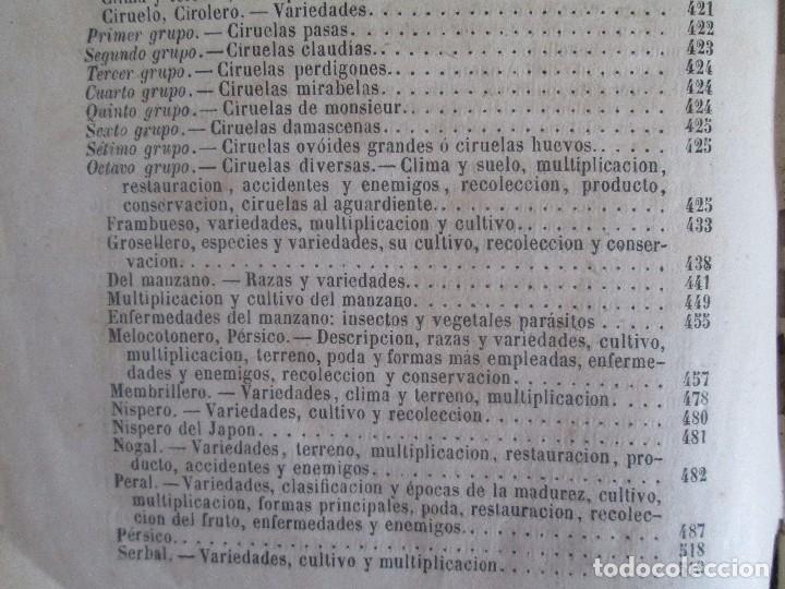 Libros antiguos: TRATADO COMPLETO DEL CULTIVO DE ARBOLES Y ARBUSTOS FRUTALES. BUENAVENTURA ARAGO. 1874 - Foto 33 - 98701191