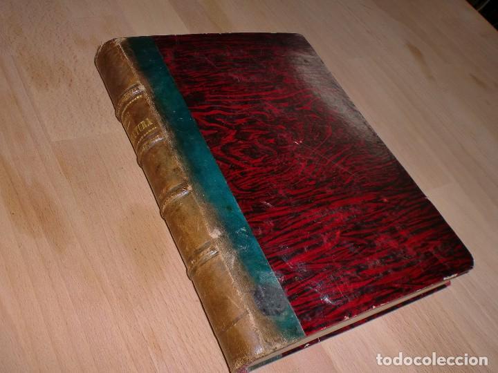 ELEMENTOS DE AGRICULTURA - MARIANO SÁNCHEZ - 1884 - ENCUADERNACIÓN LUJO *AB* (Libros Antiguos, Raros y Curiosos - Ciencias, Manuales y Oficios - Bilogía y Botánica)