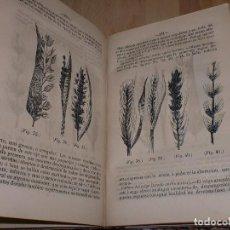 Libros antiguos: ELEMENTOS DE AGRICULTURA - ANTONIO BLANCO - 2ª EDICIÓN *AB*. Lote 99720395