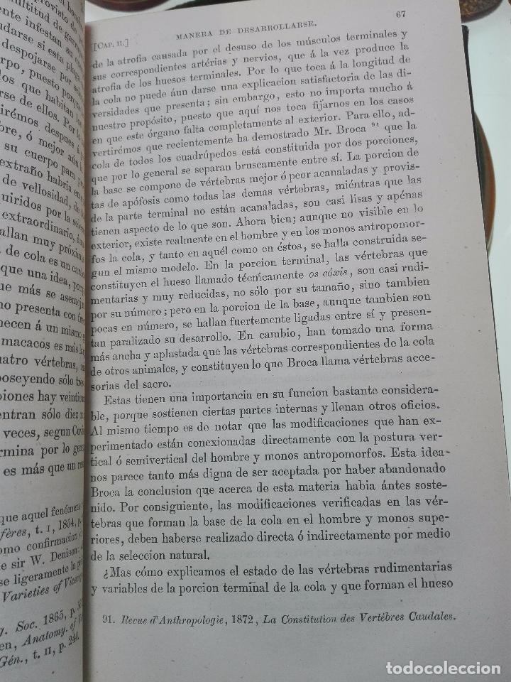 Libros antiguos: LA DESCENDENCIA DEL HOMBRE Y LA SELECCIÓN EN RELACION AL SEXO - CHARLES DARWIN - MADRID - 1885 - - Foto 5 - 101275599