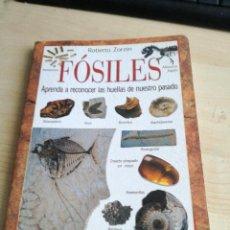Libros antiguos: LIBRO DE FOSILES. Lote 101688547