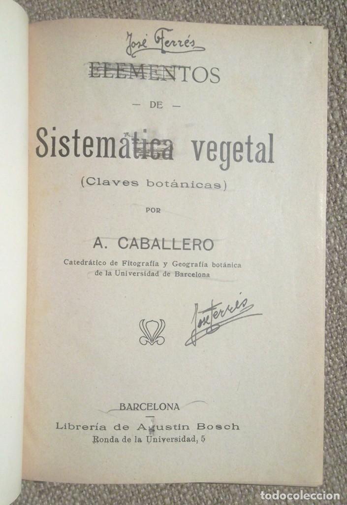 Libros antiguos: Elementos de Sistemática vegetal Claves botánicas ca 1920 A Caballero Librería Bosch flora - Foto 2 - 102525727