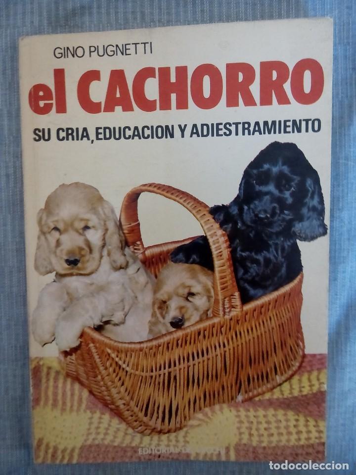 LIBRO DE COMO CUIDAR A TU CACHORRO (Libros Antiguos, Raros y Curiosos - Ciencias, Manuales y Oficios - Bilogía y Botánica)