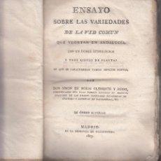 Libros antiguos: SIMON ROXAS CLEMENTE. SOBRE LAS VARIEDADES DE LA VID QUE VEGETAN EN ANDALUCÍA. MADRID, 1807. RARO. Lote 103252595