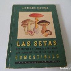 Libros antiguos: LAS SETAS COMESTIBLES.(ANDRES BUESA). Lote 104346407