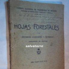 Libros antiguos: RICARDO CODORNIU Y STARICO.HOJAS FORESTALES. DEDICADO AUTOR.1912. Lote 105931963
