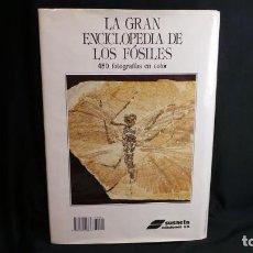 Libros antiguos: LA GRAN ENCICLOPEDIA DE LOS FOSILES.SUSAETA. Lote 106533699