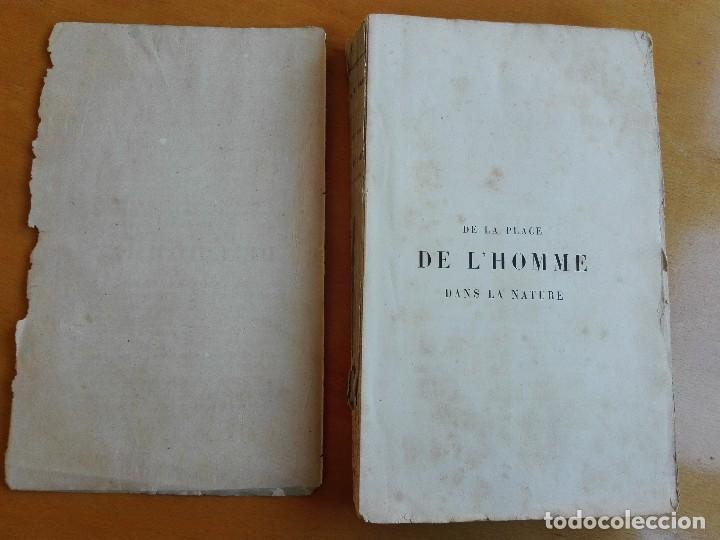 Libros antiguos: De la place de l'homme dans la nature. Huxley, Th[omas] H[enry] 1868 - Foto 3 - 107884983