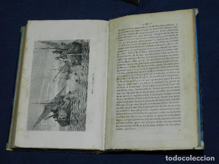 (MF) JOSE MONLAU - COMPENDIA DE HISTORIA NATURAL 1867 , MINERALOGIA, ZOOLOGIA Y BOTANICA , 3 VOLS (Libros Antiguos, Raros y Curiosos - Ciencias, Manuales y Oficios - Biología y Botánica)