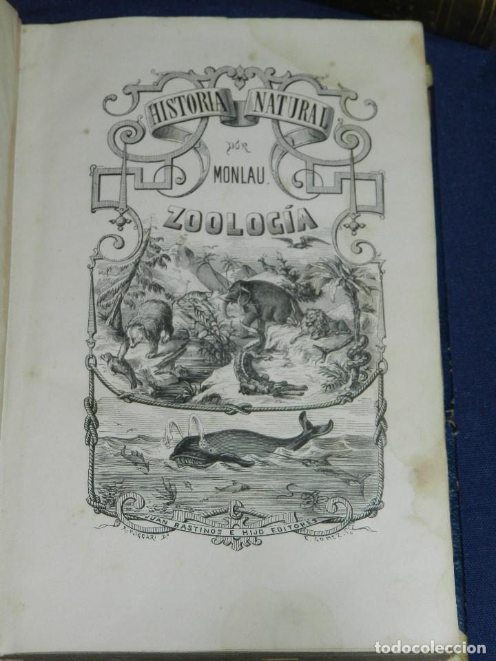Libros antiguos: (MF) JOSE MONLAU - COMPENDIA DE HISTORIA NATURAL 1867 , MINERALOGIA, ZOOLOGIA Y BOTANICA , 3 VOLS - Foto 3 - 108053771