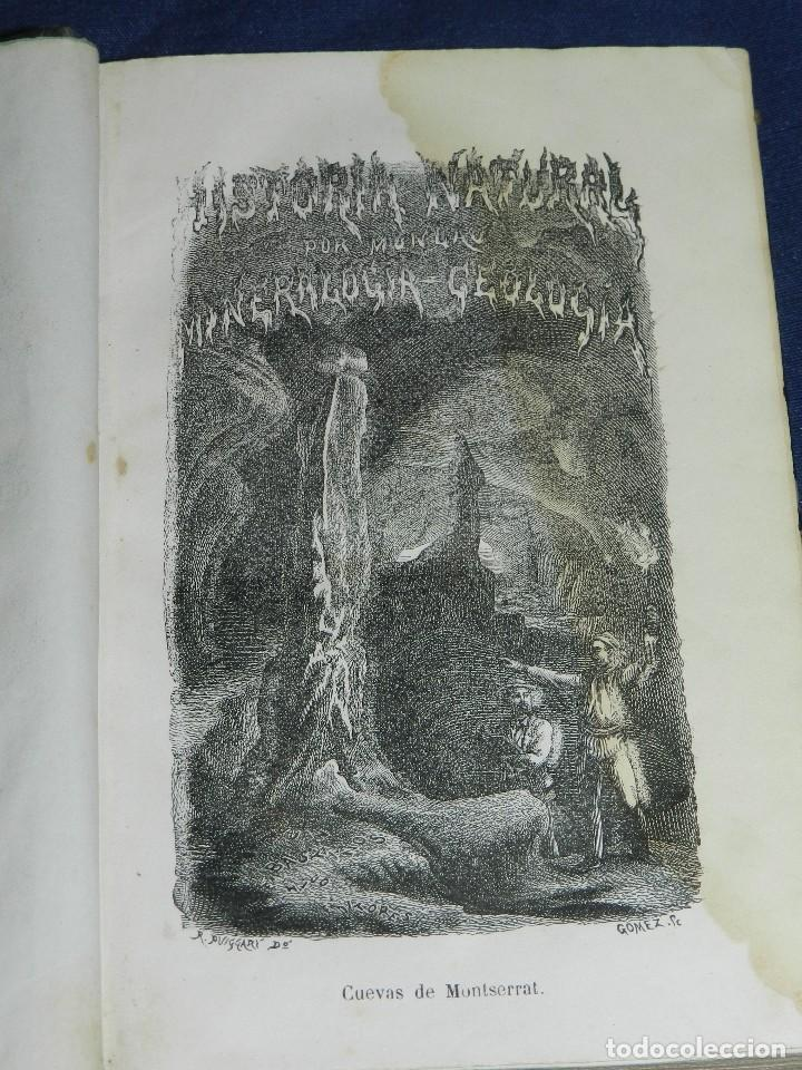 Libros antiguos: (MF) JOSE MONLAU - COMPENDIA DE HISTORIA NATURAL 1867 , MINERALOGIA, ZOOLOGIA Y BOTANICA , 3 VOLS - Foto 4 - 108053771