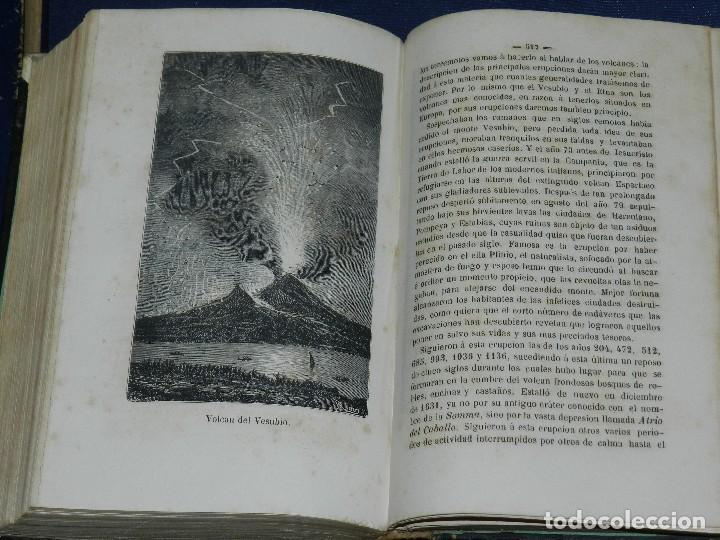 Libros antiguos: (MF) JOSE MONLAU - COMPENDIA DE HISTORIA NATURAL 1867 , MINERALOGIA, ZOOLOGIA Y BOTANICA , 3 VOLS - Foto 6 - 108053771