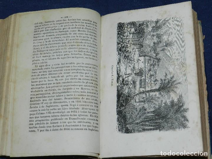 Libros antiguos: (MF) JOSE MONLAU - COMPENDIA DE HISTORIA NATURAL 1867 , MINERALOGIA, ZOOLOGIA Y BOTANICA , 3 VOLS - Foto 8 - 108053771