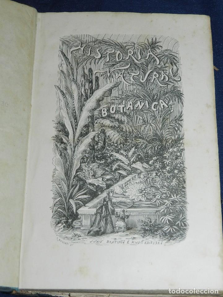 Libros antiguos: (MF) JOSE MONLAU - COMPENDIA DE HISTORIA NATURAL 1867 , MINERALOGIA, ZOOLOGIA Y BOTANICA , 3 VOLS - Foto 9 - 108053771