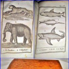 Libros antiguos: AÑO 1833: EL BUFFON DE LOS NIÑOS. LIBRO CON 16 ILUSTRACIONES DE ANIMALES. MUY INTERESANTE.. Lote 108987351