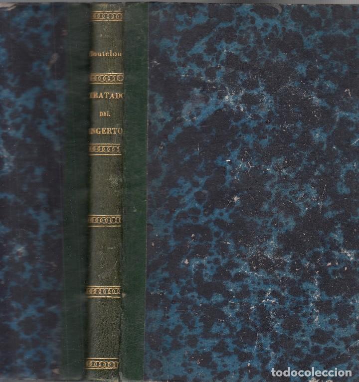 Libros antiguos: Claudio BOUTELOU. Tratado del injerto. Madrid, 1817. - Foto 2 - 109264815