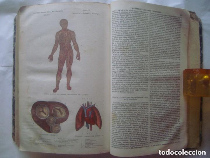 Libros antiguos: LIBRERIA GHOTICA. BUFFON. MUSEO PINTORESCO DE HISTORIA NATURAL. 1852. FOLIO. 2T. GRABADOS ILUMINADOS - Foto 12 - 110342159
