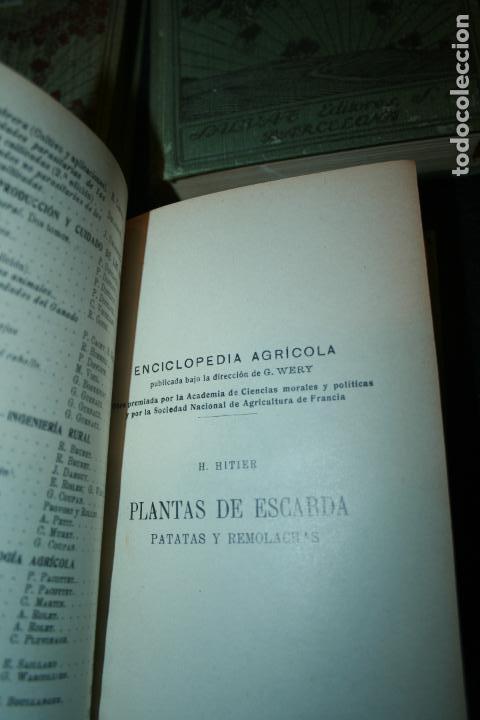 Libros antiguos: Enciclopedia agrícola, 10 tomos siglo XX-conservas,maquinas,viticola...G.Wery - Foto 4 - 110448699
