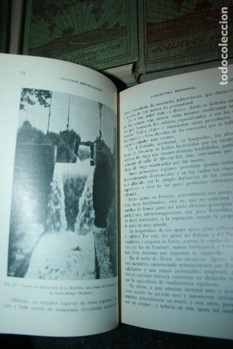 Libros antiguos: Enciclopedia agrícola, 10 tomos siglo XX-conservas,maquinas,viticola...G.Wery - Foto 6 - 110448699