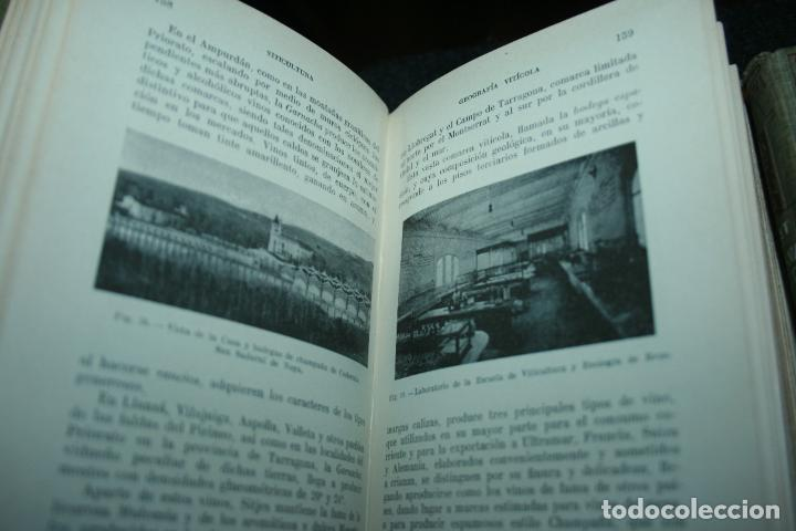 Libros antiguos: Enciclopedia agrícola, 10 tomos siglo XX-conservas,maquinas,viticola...G.Wery - Foto 10 - 110448699