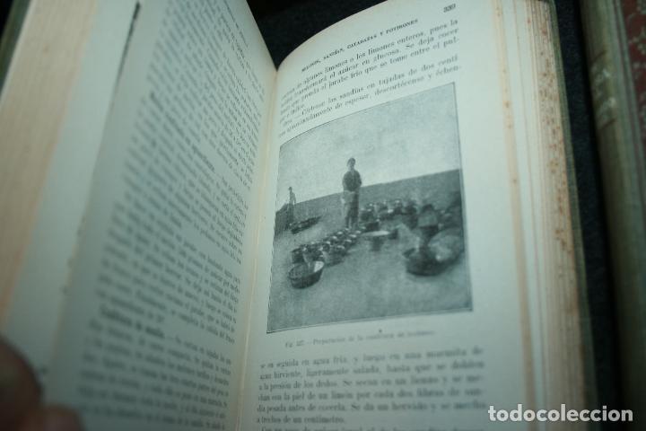 Libros antiguos: Enciclopedia agrícola, 10 tomos siglo XX-conservas,maquinas,viticola...G.Wery - Foto 18 - 110448699