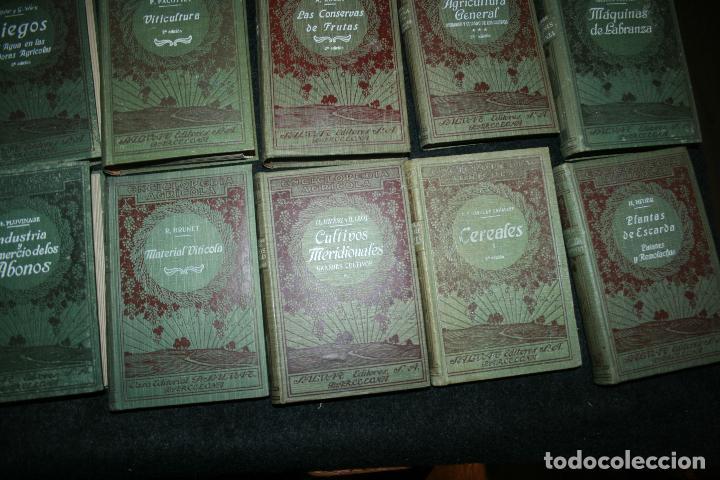 Libros antiguos: Enciclopedia agrícola, 10 tomos siglo XX-conservas,maquinas,viticola...G.Wery - Foto 23 - 110448699