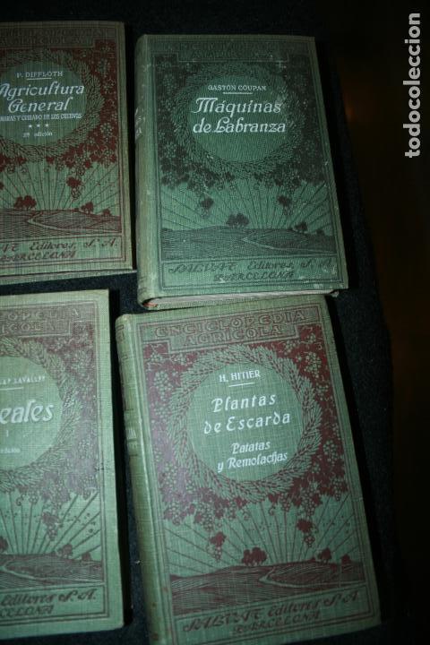 Libros antiguos: Enciclopedia agrícola, 10 tomos siglo XX-conservas,maquinas,viticola...G.Wery - Foto 24 - 110448699