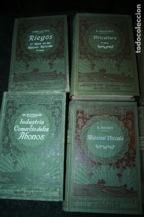 Libros antiguos: Enciclopedia agrícola, 10 tomos siglo XX-conservas,maquinas,viticola...G.Wery - Foto 26 - 110448699