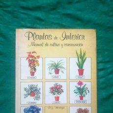 Libros antiguos: PLANTAS DE INTERIOR.. Lote 111388947