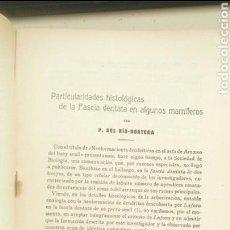 Libros antiguos: PARTICULARIDADES... 1918 - 1919 BOL. SOC. ESP. DE BIOLOGÍA PÍO DEL RÍO HORTEGA (DISCÍPULO DE CAJAL). Lote 112980500